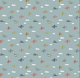 BW Flieger/Wolken mint