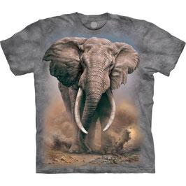 Elefant African