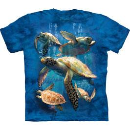 Turtles Collage 5