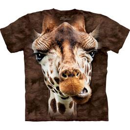 Giraffe Big Face