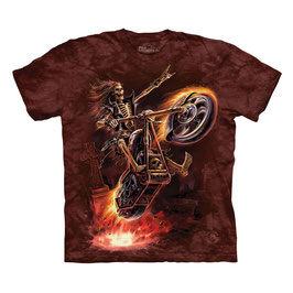 DH Hell Rider