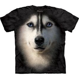 Husky Sibirian Face