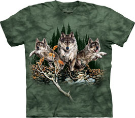 Find 9 Wolves Green