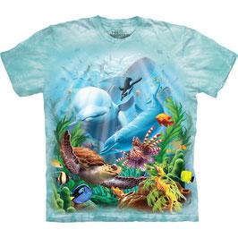Delfine im Korallenriff