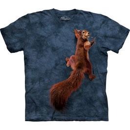 Eichhörnchen V