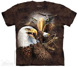 Find 14 Eagles