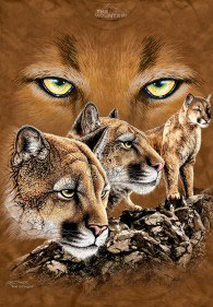 Find 10 Pumas