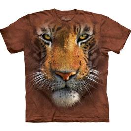 Tiger Big Face Orange