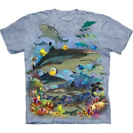 Hai Reef