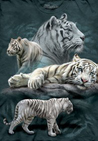 White Tiger Collage 4