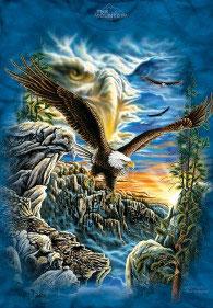 Find 11 Eagles