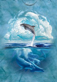 Dolphins Clouds