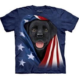 Hund Black Lab