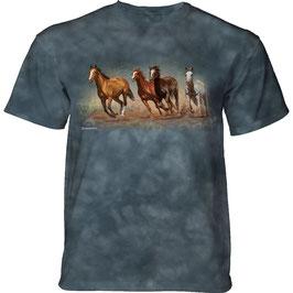 Pferd Fly Away