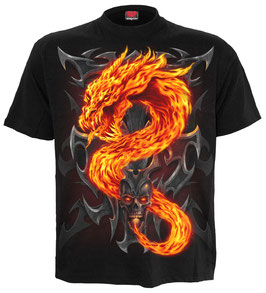 Dragon Fire and Skull