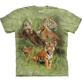 Wild Tiger Collage