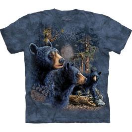 Bär Find 13 Black Bears