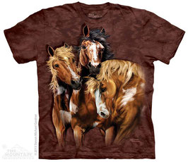 Find Horses Brown