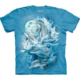 Bergsma Dolphins
