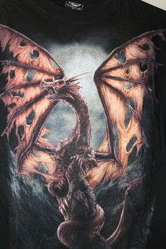 Dragon Eaten Wings