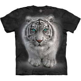 Tiger Wild Intentions