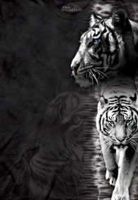 White Tigers Evolution Black