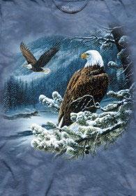 Adler im Schnee