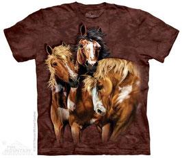 3 Pferde braun