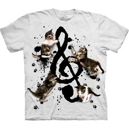 Büsi Music Kittens