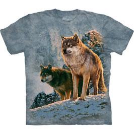 Wolf Couple Sunset