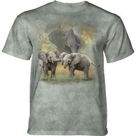 Elefant mit 2 Jungen