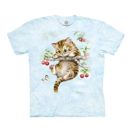 Cherry Kitten