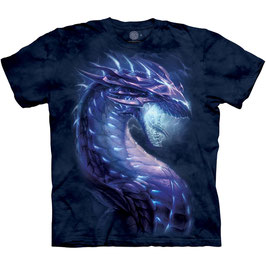 Stormborn Dragon