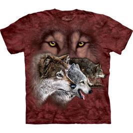 Wolf Find 9