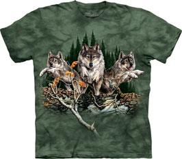 Wolf Find 10