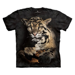 Leopard Smithonian