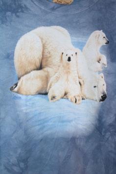 Eisbär mit 2 Jungen