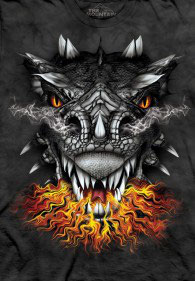 Dragon Old Fire