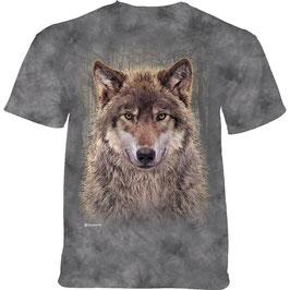 Wolf Forrest