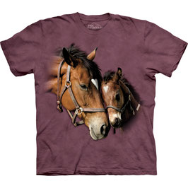 2 Horses Heart