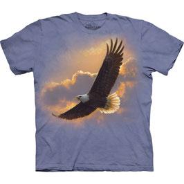 Adler Soaring Spirit