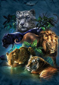 Big Cats Jungle