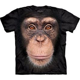 Aff Schimpanse