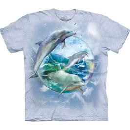Delfin Bubble