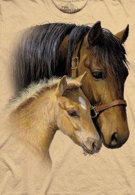 Pferd mit Jungem hellbraun