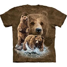 Find 10 Bears