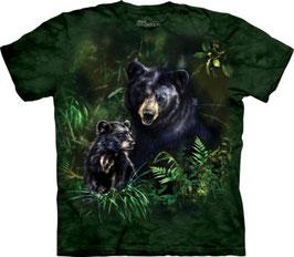 Schwarz Bär mit Jungem