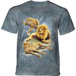 Leopard Löwe Gepard