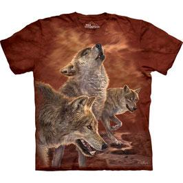 3 Wölfe rot