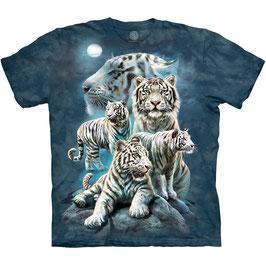 Night Tiger Collage